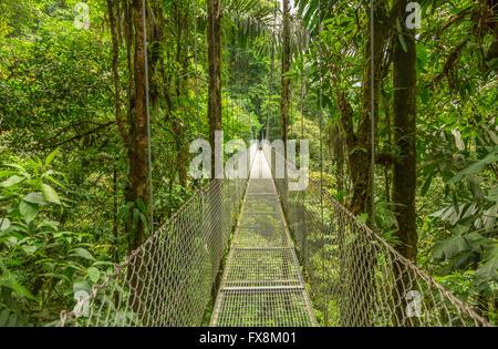 Hängebrücke am natürlichen Regenwald Park, Costa Rica - Stockfoto