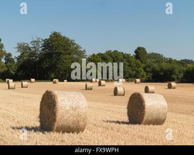 Stroh Rundballen in einem abgeernteten Feld an einer sonnigen Augusttag in Kent, England, UK - Stockfoto
