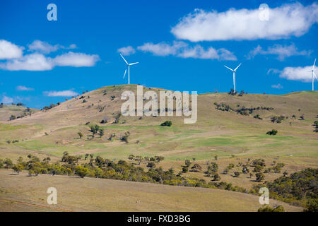 Ein Windpark nahe der Stadt Dalgety, New-South.Wales, Australien - Stockfoto