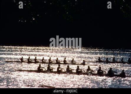 Paddler in den Kopf der Schuylkill Regatta Rudern; Delaware River; Philadelphia; Pennsylvania; USA - Stockfoto