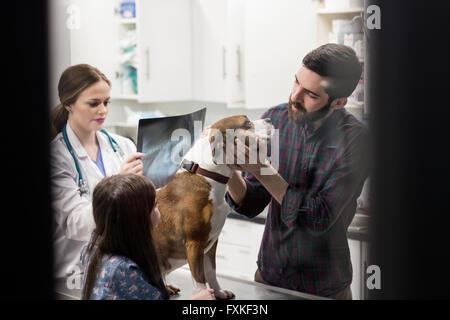 Spielen mit ihrem Hund beim Tierarzt Röntgen im Hintergrund suchen Besitzer
