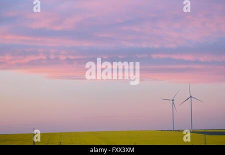Äolischen Feld und Windturbinen bei Sonnenuntergang - Stockfoto