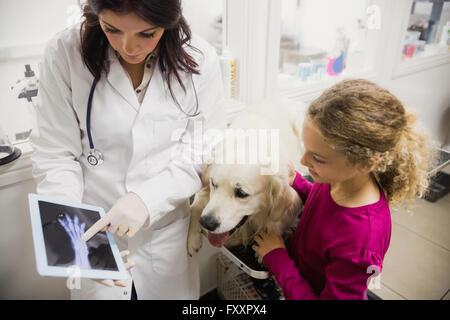 Tierarzt diskutieren Röntgen eines Hundes - Stockfoto