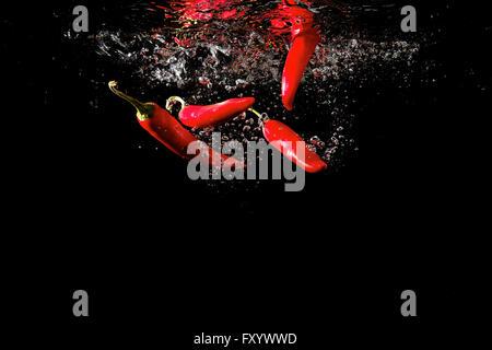 Mehrere rote Paprika ins Wasser gefallen - Stockfoto