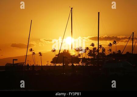Sonnenuntergang-Silhouetten - Stockfoto