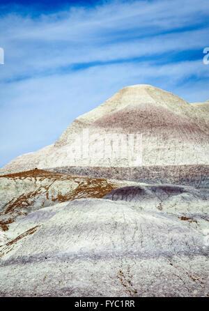 Petrified Forest Nationalpark - Stockfoto