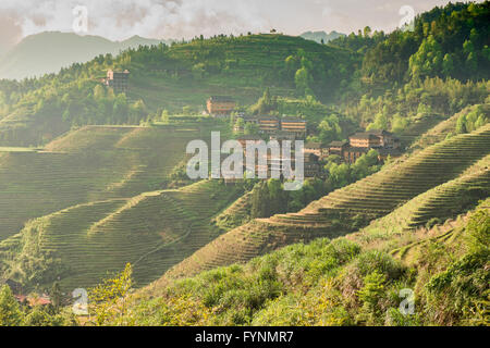 Die atemberaubende Reisterrassen von Jinkeng in Longji, autonome Region Guangxi, China - Stockfoto