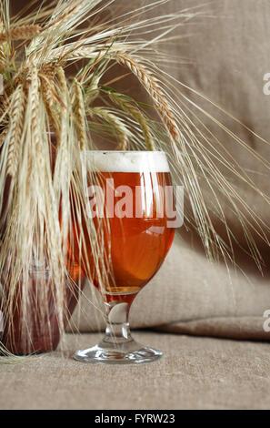 Glas Bier auf Hintergrund der Arbeitsfläche in der Nähe von Ähren - Stockfoto