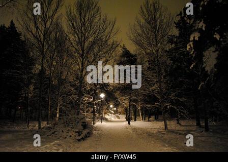 Schweden. Stockholm. Verschneiten Park in der Nacht. - Stockfoto