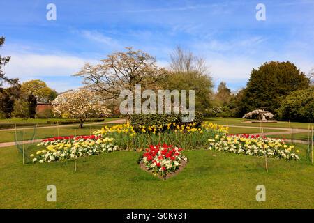 Landschaftspark mit Blumenbeeten und blühende Bäume im Frühling. - Stockfoto