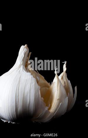 Nahaufnahme von Knoblauch Zwiebel auf schwarzem Hintergrund - Stockfoto