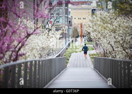 New York The High Line (auch bekannt als der High Line Park) ist ein linearer Park in Manhattan an einer erhöhten - Stockfoto