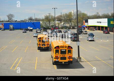 Nordamerikanische Schulbusse warten auf einem Parkplatz in Kanada. Stockfoto