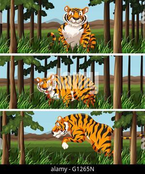 Wilde Tiger Leben in den Dschungel-Abbildung - Stockfoto