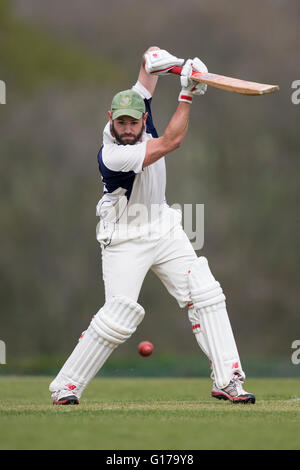 Marnhull CC 1. XI V Poole Stadt 1. XI, Poole CC Spieler in Aktion Batting - Stockfoto