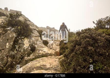 Rückansicht des weiblichen Wanderer und ihr Hund wandern in nebligen Bergen, Spanien - Stockfoto