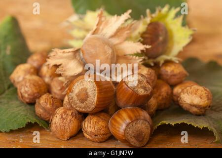 Haselnüsse, serviert auf Tischplatte - Stockfoto