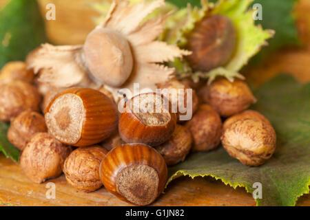 Haselnüsse auf Tischplatte - Stockfoto