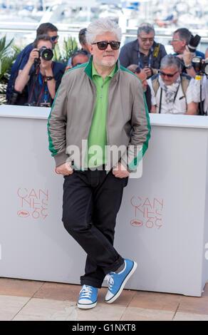 Cannes, Frankreich. 17. Mai 2016. Cannes, Frankreich. 17. Mai 2016. Pedro Almodovar Direktor Julieta, Photocall. - Stockfoto