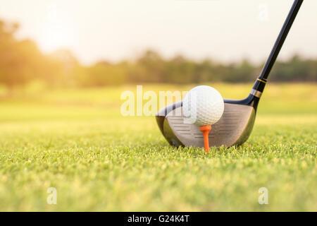 Golfschläger und Ball im Rasen - Stockfoto
