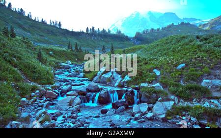 Schöne Sky Trail in Mt Rainier 2. WA, USA - Stockfoto