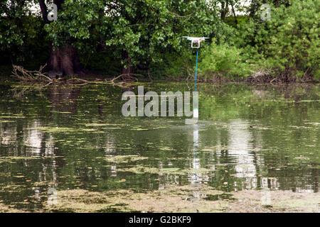 Eine Drohne nimmt eine Wasserprobe in einem Teich. - Stockfoto