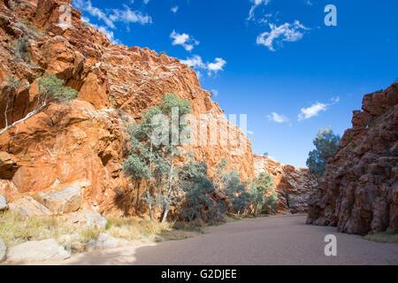 Emily Lücke Nature Reserve in der Nähe von Alice Springs, Northern Territory, Australien Stockfoto