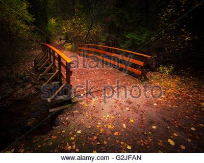 Eine Brücke, Laub und ein Mann geht seinen Hund in Mill Creek Provincial Park, Britisch-Kolumbien, Kanada - Stockfoto