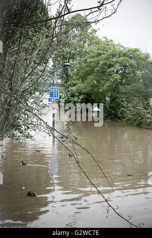 Paris, Frankreich. 3. Juni 2016. Hochwasser der Seine in Paris - Frühjahr 2016 - Stockfoto