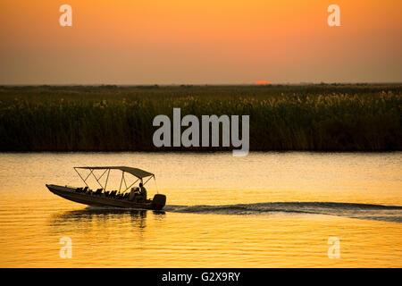 Silhouette Boot auf einem Fluss-Safari am Chobe Fluss, Botswana, Afrika - Stockfoto