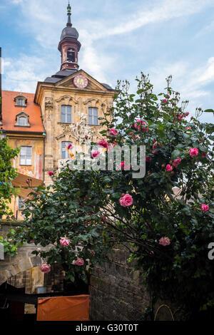 Altes Rathaus in Bamberg mit Rosen - Stockfoto