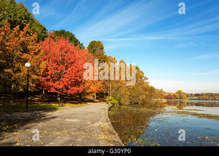 NY Round Valley Herbst Parklandschaft, Seeufer - Stockfoto