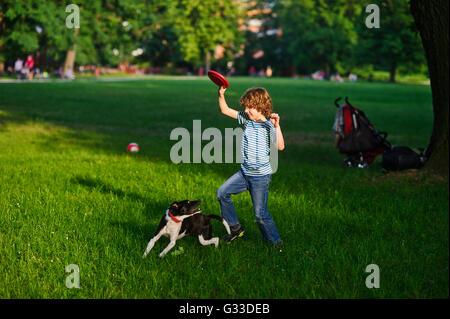 Der junge spielt im Park mit dem Hund. Grünen Lichtung im Park. Der Blondschopf von 8-9 Jahren hält eine rote Scheibe - Stockfoto