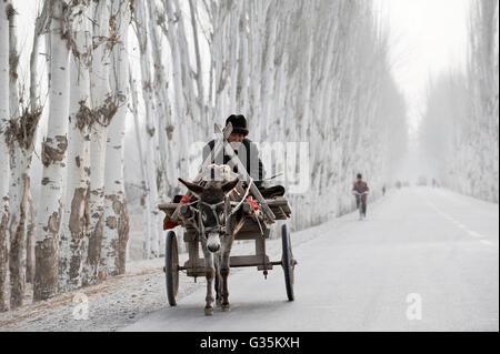 Asien China Provinz Xinjiang der Uiguren Dörfer rund um die Stadt Kashgar, wo uigurischen Volkes leben, Landwirt - Stockfoto