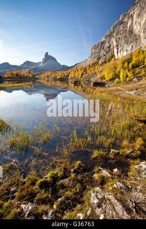 Der Gipfel spiegeln sich Becco Mezzodi in See Föderation umgeben von bunten Wäldern im Herbst Belluno Dolomiten - Stockfoto