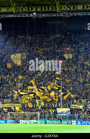 BVB-Fans in der Südkurve schwenkten ihre Fahnen vor dem Start des Spiels, UEFA Champions League, Borussia Dortmund - Stockfoto