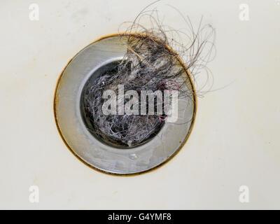 haare verstopfen abfluss gallery of dusche saugglocke pampel guter haare fur dusche hochdruck. Black Bedroom Furniture Sets. Home Design Ideas