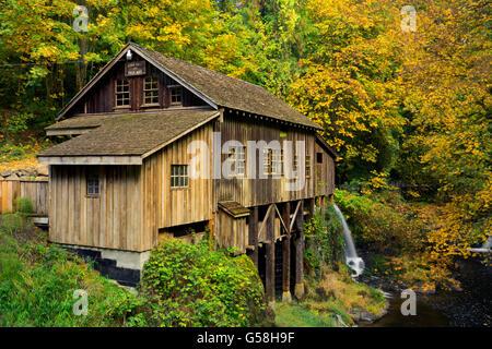 WA12822-00... WASHINGTON - Herbstfarben am Cedar Creek Grist Mill auf Cedar Creek in der Nähe von Wald gelegen. - Stockfoto