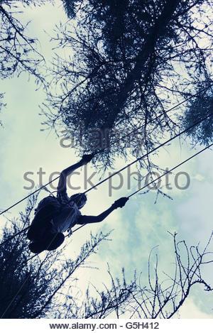 Person in einem Baum - Stockfoto