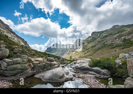 Fluss Golo, bergige Landschaft, Natur Naturpark von Korsika, Parc Naturel Régional de Corse, Korsika, Frankreich - Stockfoto