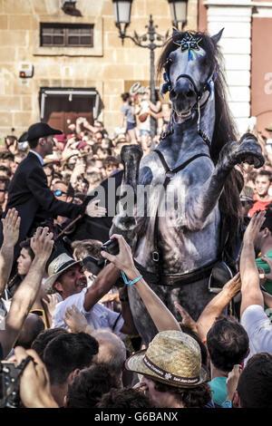"""Ciutadella De Menorca, Balearen, Spanien. 23. Juni 2016. Ein """"Caixer"""" (Reiter) bäumt sich auf seinem Pferd, umgeben - Stockfoto"""