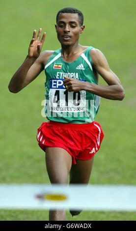 IAAF World Crosslauf - Stockfoto