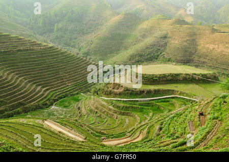 Wunderschönen Reisterrassen Jinkeng in Longji, autonome Region Guangxi, China - Stockfoto