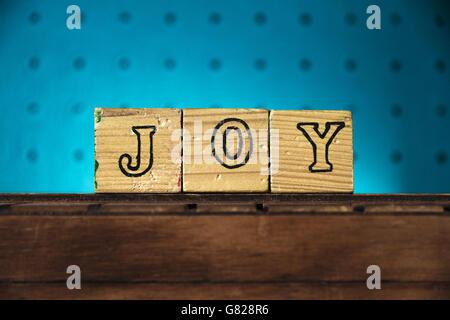 """Das Wort """"Freude"""" mit Buchstaben auf Holzspielzeug Blöcke geschrieben - Stockfoto"""