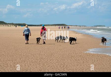 Menschen zu Fuß Hunde auf Holkham Beach, North Norfolk, england - Stockfoto