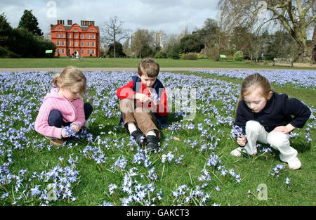 Kew Gardens in voller Blüte - Stockfoto