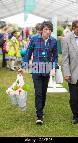 Rolling Stones-Gitarrist Ronnie Wood im RHS Hampton Court Flower show tragen einige Rittersporn - Stockfoto