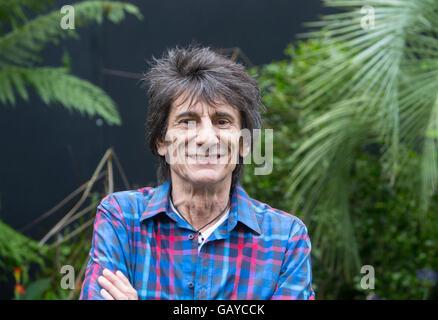 Rolling Stones-Gitarrist Ronnie Wood im RHS Hampton Court Flower show an einem Stand, die Unterstützung von Menschen - Stockfoto