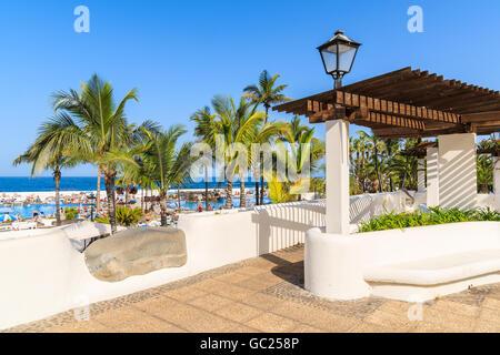 Palmen im öffentlichen Park Lago Martianez in Puerto De La Cruz, Teneriffa, Kanarische Inseln, Spanien - Stockfoto