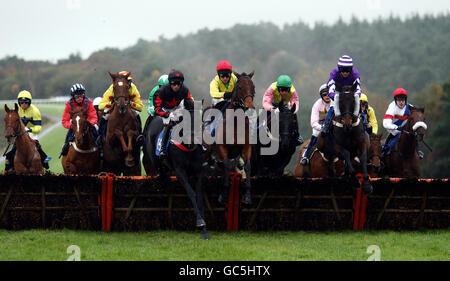 Pferderennen Sie-Exeter Racecourse